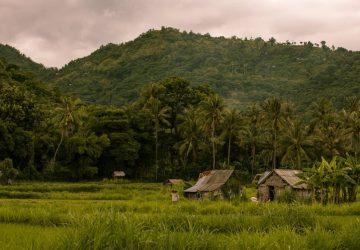 Récit de confinement : un argentin à Bali