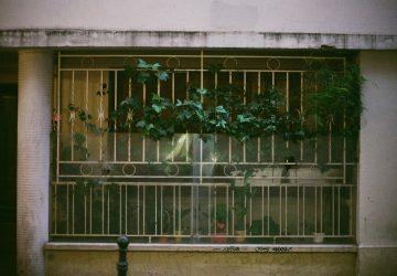 Les jours qui passent : monologue de l'indifférence